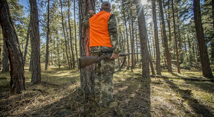 Opening Day in Pennsylvania: The Deer Hunter's Holiday ...