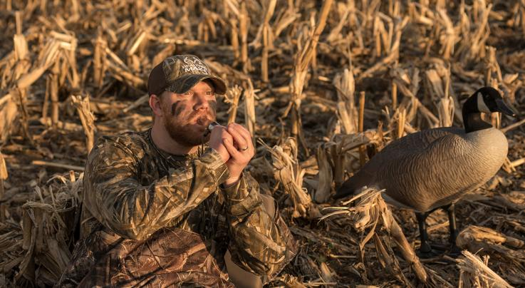 Waterfowl Music: Off-Season Sound Maintenance Preview Image