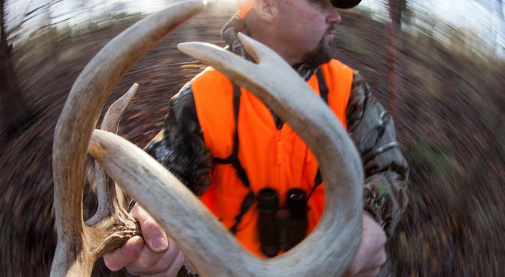 8 Tips to Rattle in More Deer Preview Image