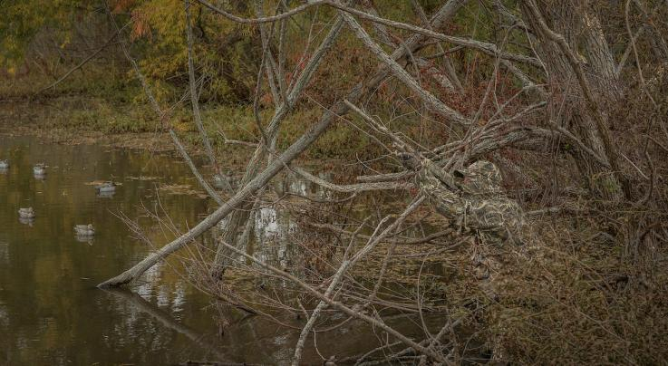 Waterfowl Weirdness: Trick Shots You Must Master Preview Image
