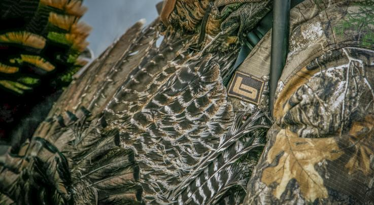 4 Fall Turkey Hunting Tips Preview Image