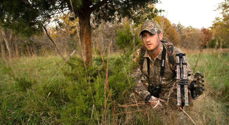 How to Manage Deer Populations Inside City Limits Preview Image