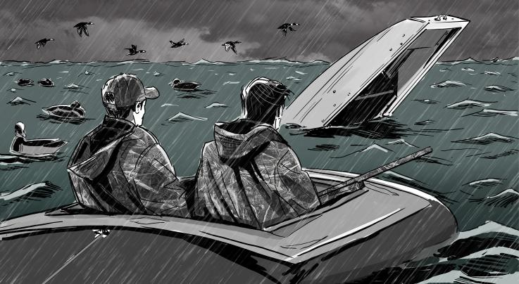 Gale Force: A Cautionary Tale of Ducks and Weather Preview Image