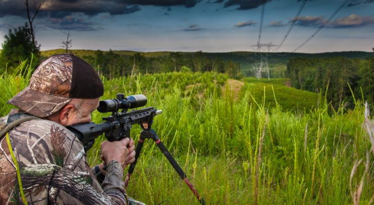 How to Hunt Eastern Coyotes Preview Image