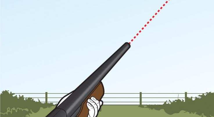 10 Tips for Better Dove Hunting Preview Image