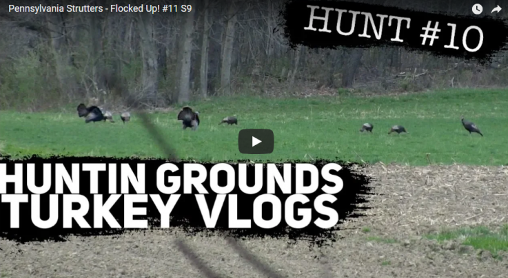 Huntin Grounds Video: Pennsylvania Strutters Preview Image