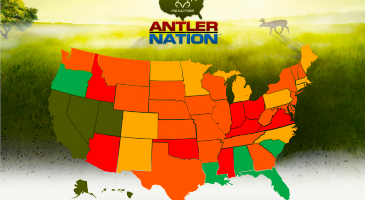 15 Most Pressured Deer Hunting States in America Preview Image