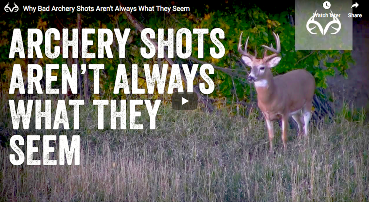 Why Bad Archery Shots Aren't Always What They Seem Preview Image