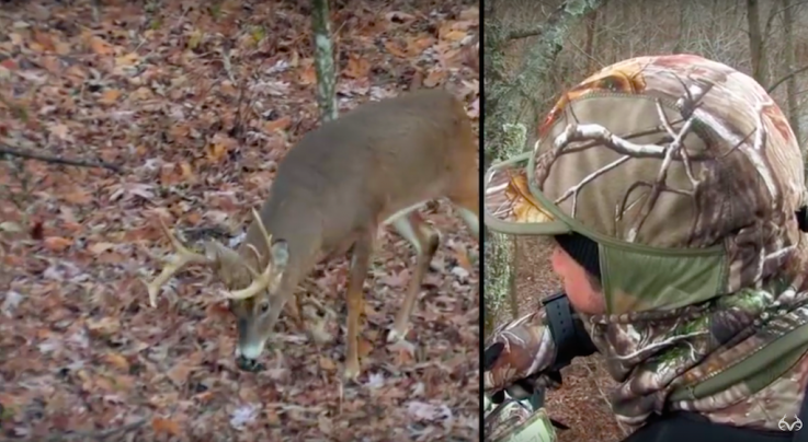 Bowhunting Deer During the Pre-Rut in the North Preview Image