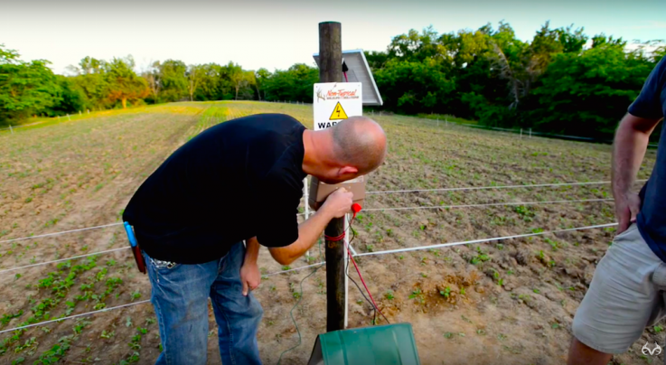 How to Use Food Plot Enclosures to Prevent Overgrazing Preview Image