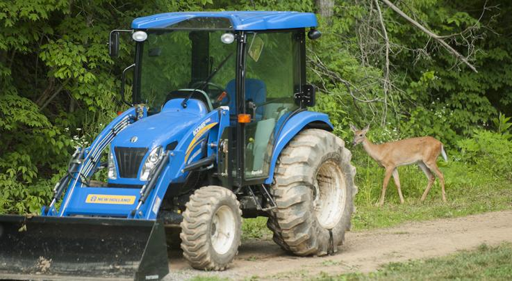 7 Preparations for Food Plot Planting Season Preview Image