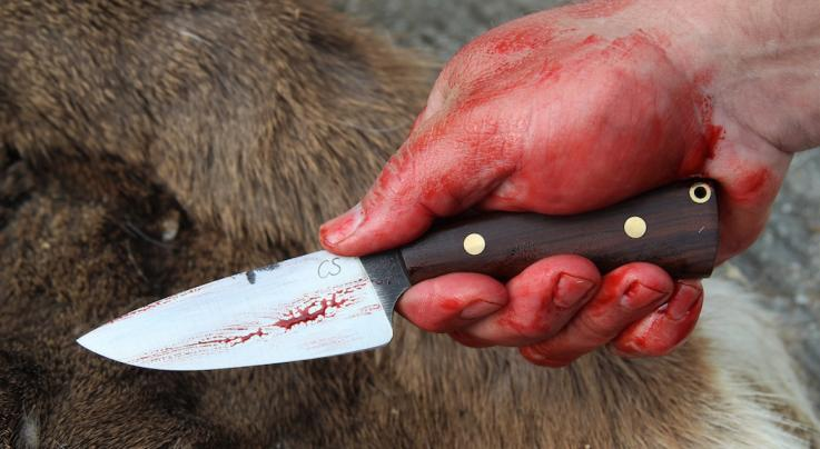 15 Steps to Forge Your Own Deer Skinning Knife Preview Image