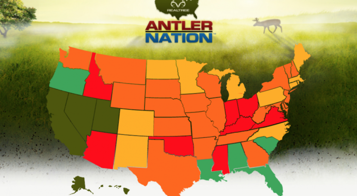 10 Least Pressured Deer Hunting States in America Preview Image