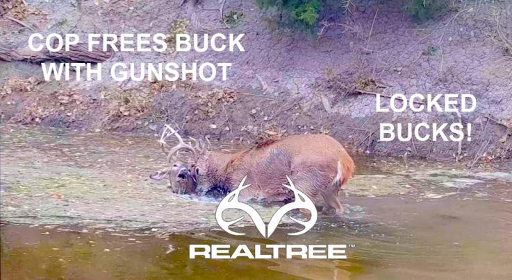 Watch Cop Free Two Locked Bucks with a Gunshot  Preview Image