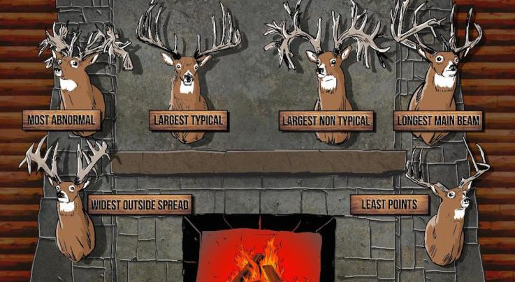 The Greats: Top Record Book Whitetails by Category Preview Image