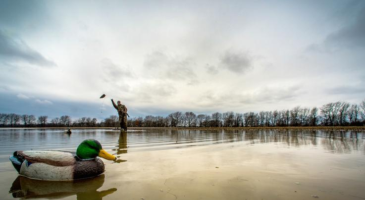 The Mobile Waterfowler Kills More Ducks Preview Image