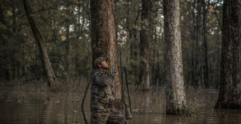 Guide to Green Timber Mallard Hunting Preview Image