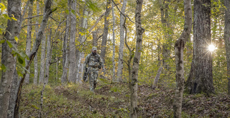 Back to Bow Season: Great Deer Hunting Gear for 2019 Preview Image