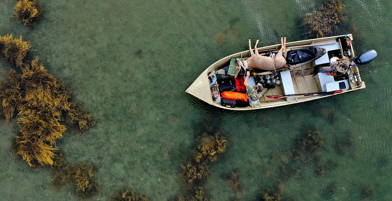 Boats and Bucks  Preview Image