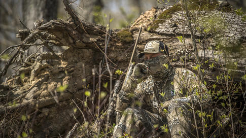 Tips for Summertime Coyote Hunting  Preview Image