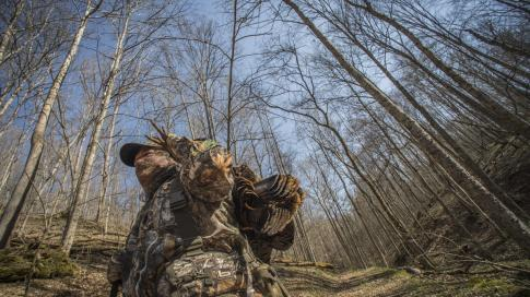 The Truth About Fall Gobbler Hunting Preview Image