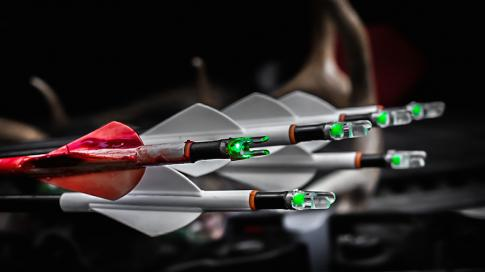 What's the Best Fletching for Bowhunting? Preview Image