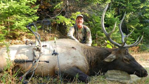 5 Places to Find Elk in Pressured Easy-to-Access Areas Preview Image