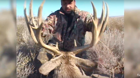 Ralph Cianciarulo Shoots a Giant Mule Deer Preview Image