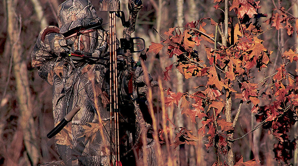 Realtree Hardwoods Hd 174 Camo Realtree