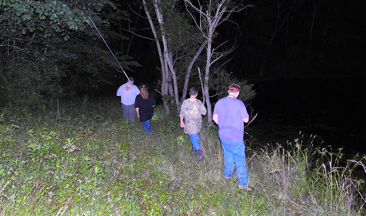 Move quietly along the bank and shine your light into the water to search for frogs.