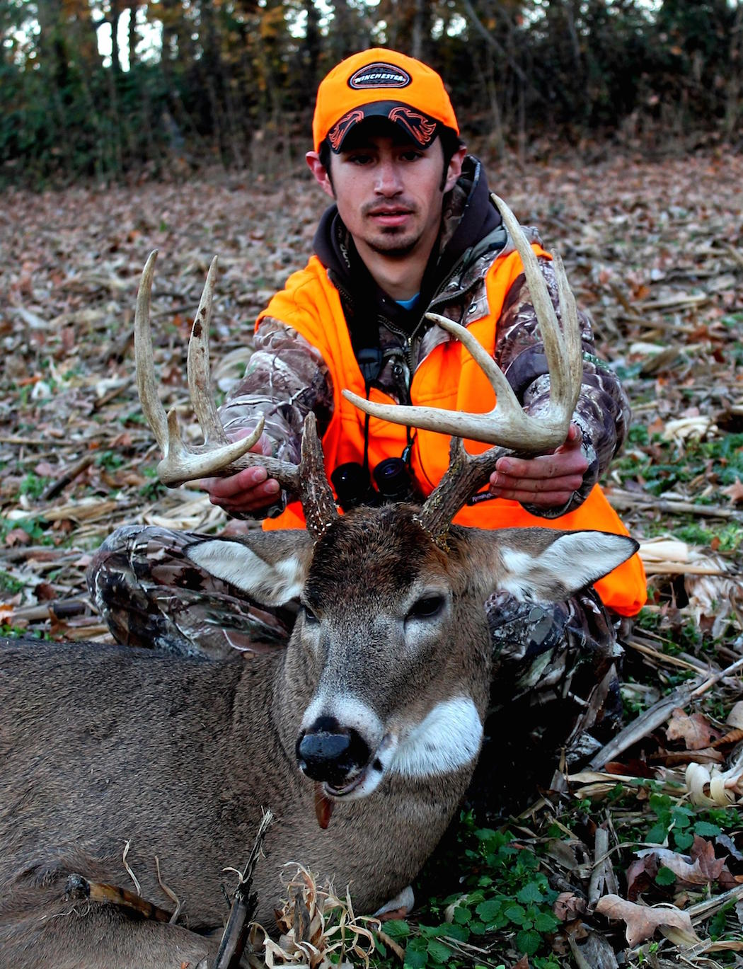 Myth: Culling Deer Will Significantly Improve Overall Antler Production.