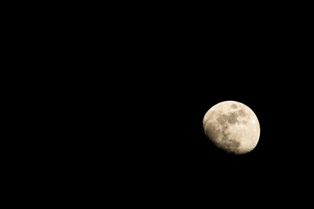 Myth: The Moon Dictates Breeding, Conception Dates, and Even Daylight Feeding Activity.