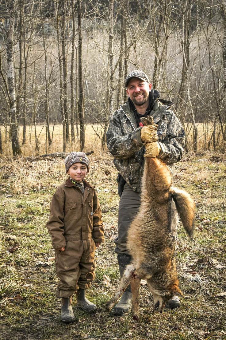 Commercial coyote baits and scents really do work.