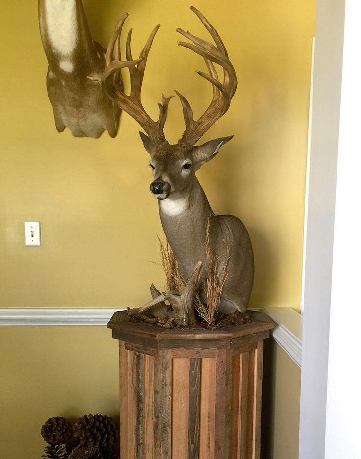 Traditional Pedestal Mount