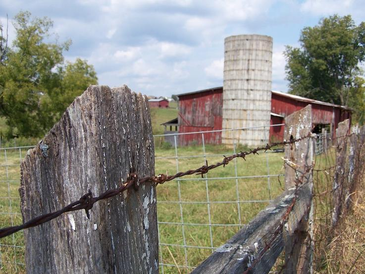 Don't Hold Firearms In-Hand When Crossing Fences and Other Obstacles