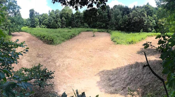 You Don't Optimize Food Plot Size and Shape