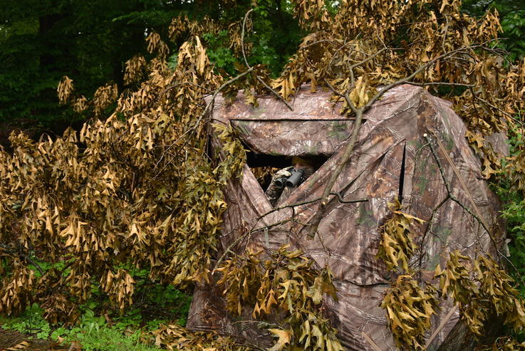 Choose the Right Ground Blind