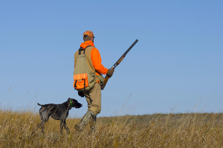 Pressure from Small-Game Hunters