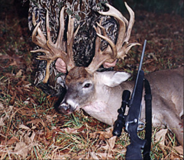 The McMurray Buck
