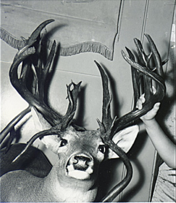 The Other Texas Buck