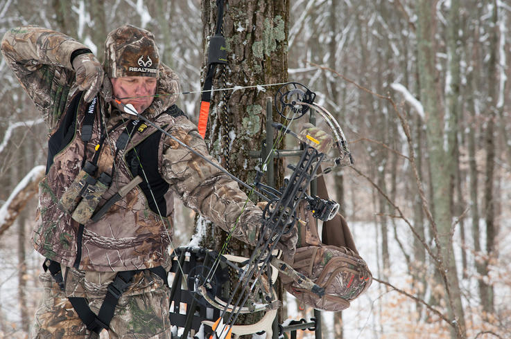10 Researched Facts About Treestand Falls You Should Know