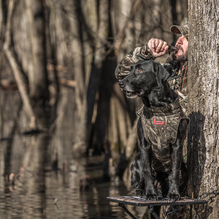 Do: Use a Great Dog to Recover Wood Ducks