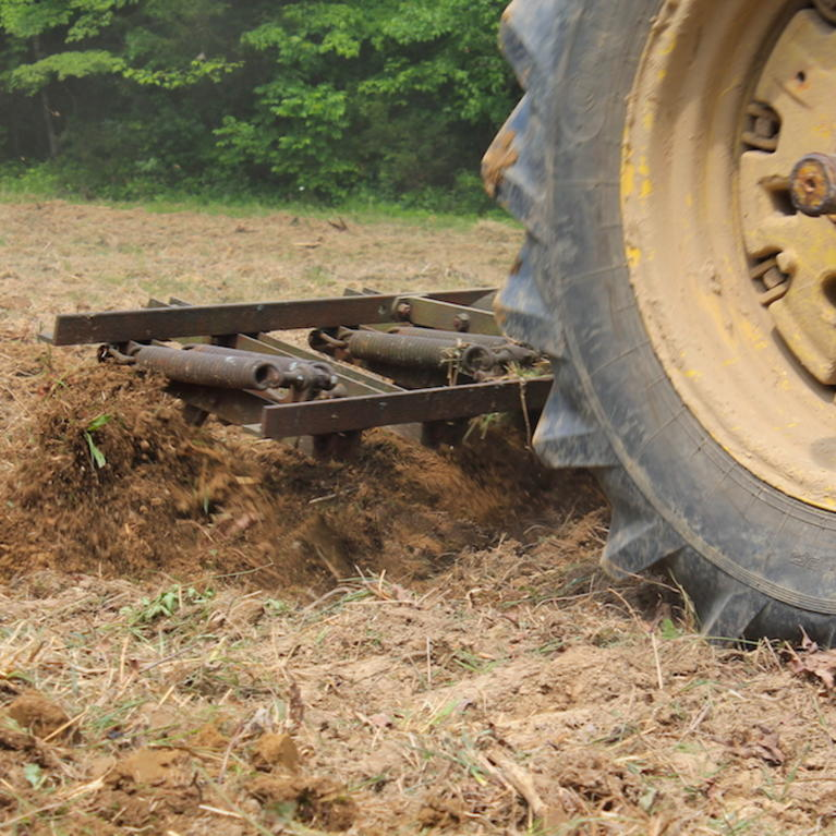 Till and Disk the Ground If You Don't Spray for Weeds