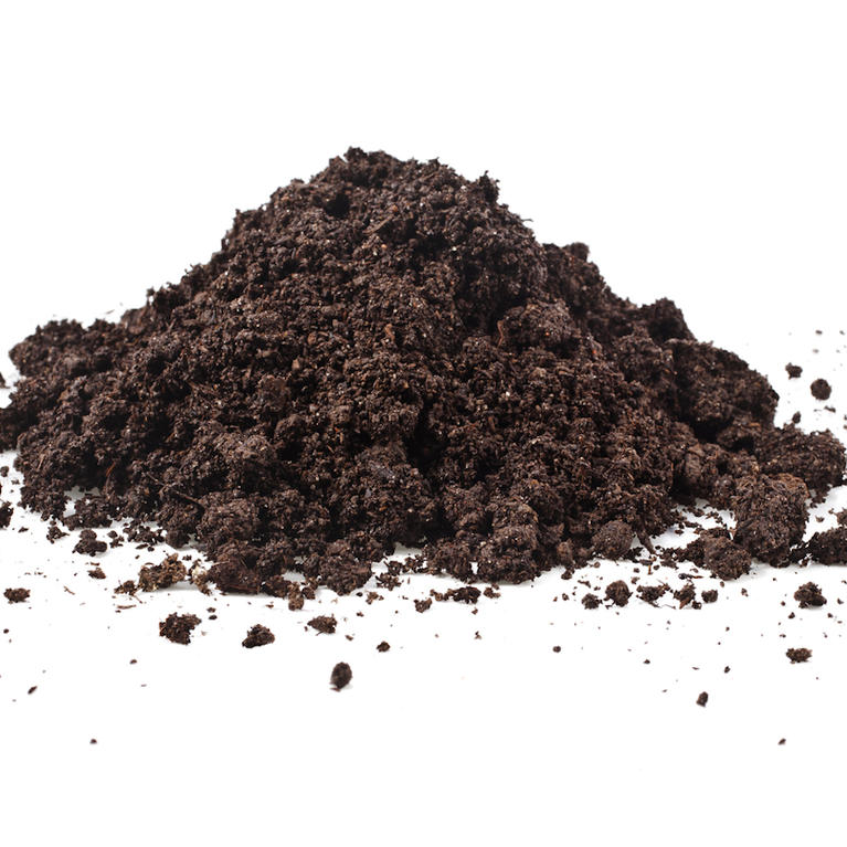 Type: Loamy Soil