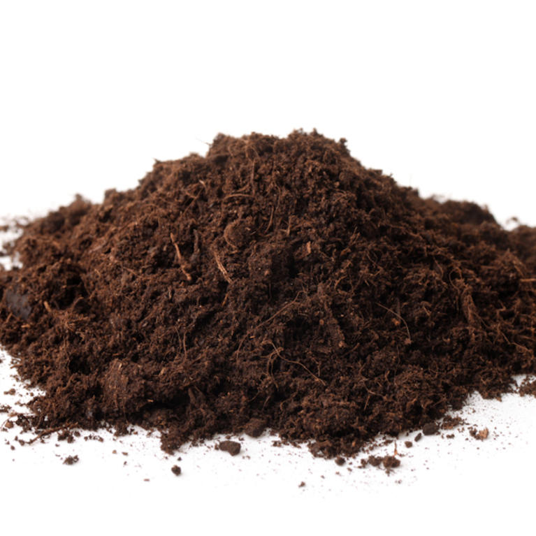 Type: Peat Soil