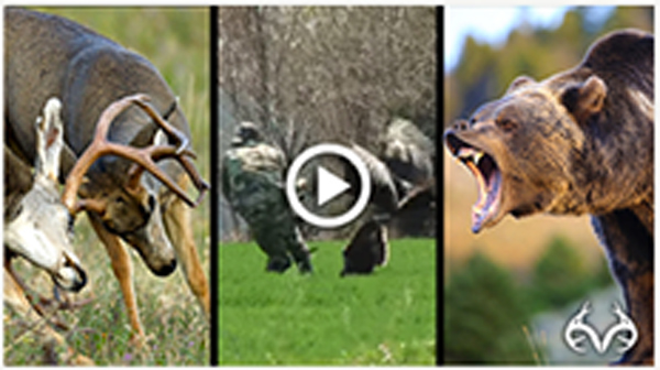 Realtree Viral Videos
